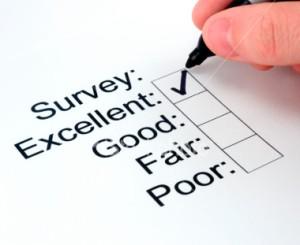 survey-pic2